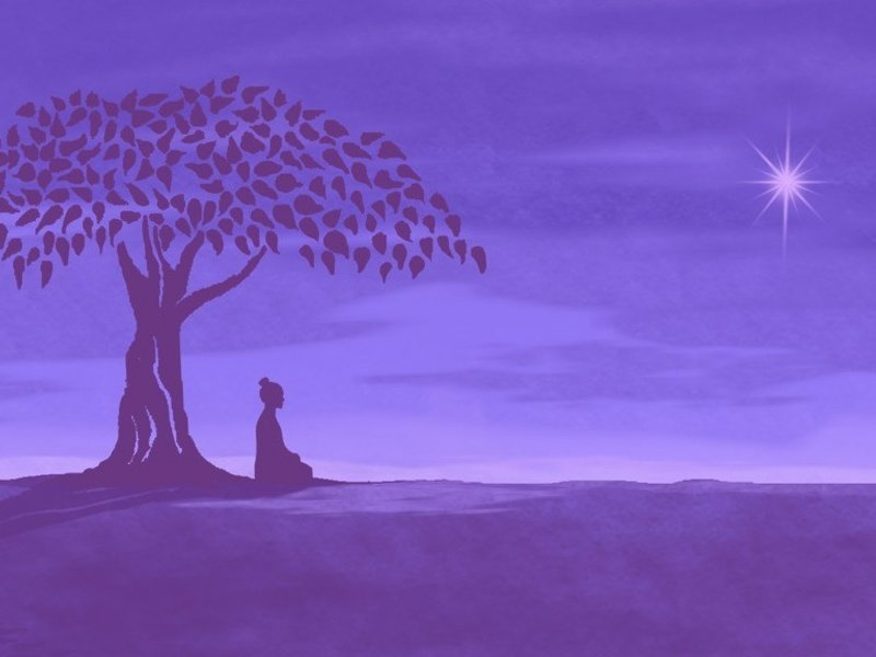 Che cosa è la Meditazione?